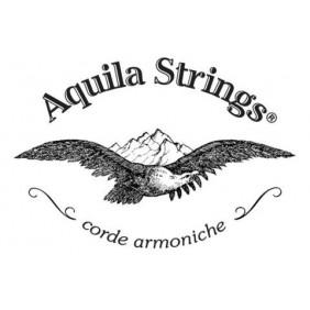 Znalezione obrazy dla zapytania aquila struny logo